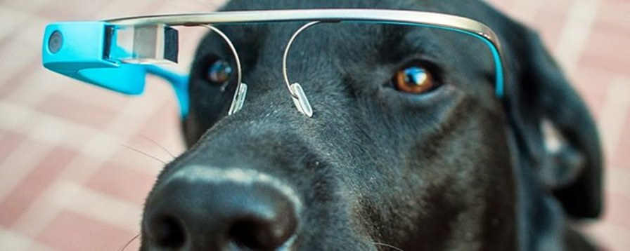 googleglass2 Confira os primeiros jogos criados para Google Glass.