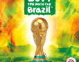 fifa-world-cup-brazil-java